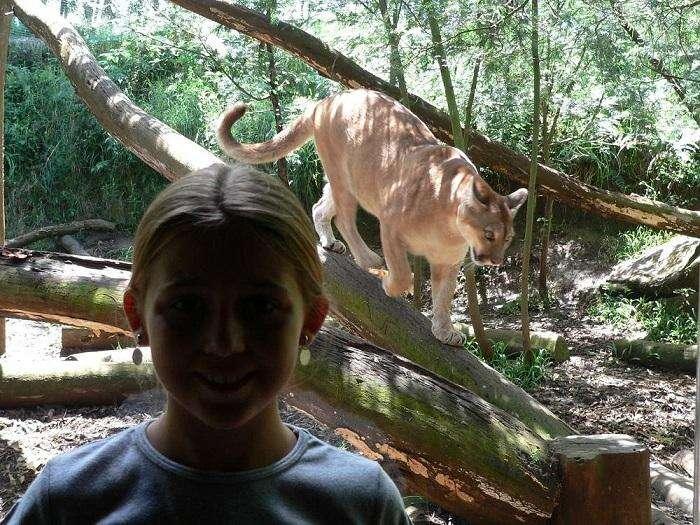 Zoo Gramado