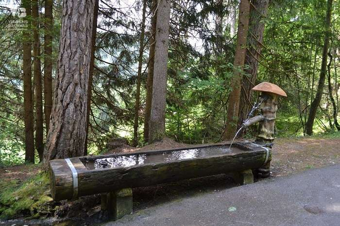 Fonte no Caminho para o Caumasee