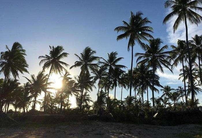 Quando ir para a Península de Maraú