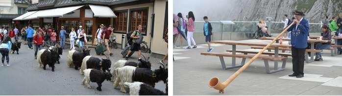 Cultura e diferentes tradições na Suíça