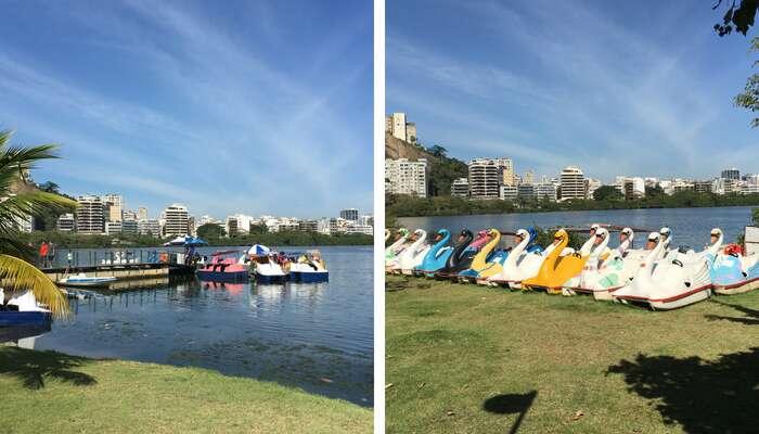 Imagem de Pedalinhos na Lagoa Rodrigo de Freitas