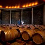 Barris vinho Vinícola no Chile