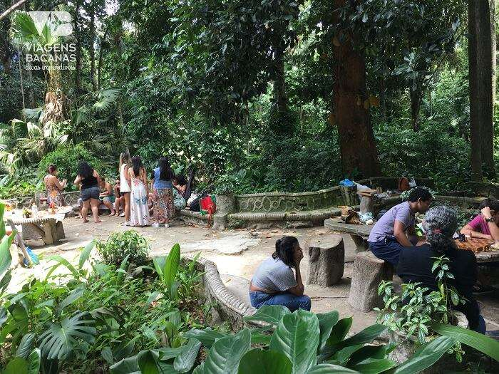 Piquenique no Parque Lage - Viagens Bacanas