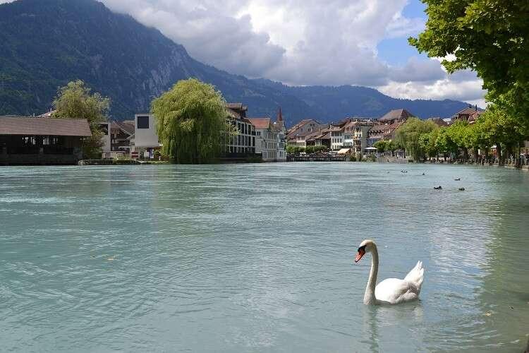 Interlaken na Suíça - Viagens Bacanas