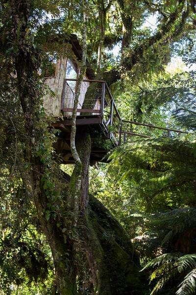 Casa da Árvore na Pousada do Engenho - Viagens Bacanas