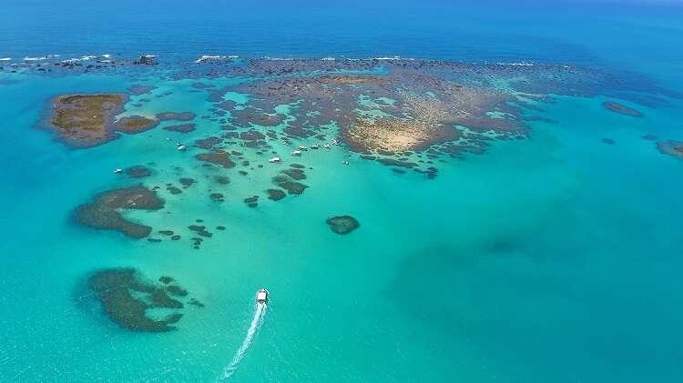 Barreira de Corais em Maragogi