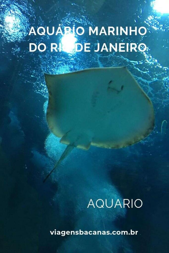 Aquário Marinho do Rio de Janeiro- Viagens Bacanas