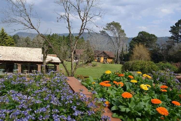 Le Jardin Parque de Lavanda em Gramado - Viagens Bacanas