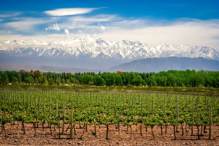 Mendoza - Argentina - Viagens Bacanas