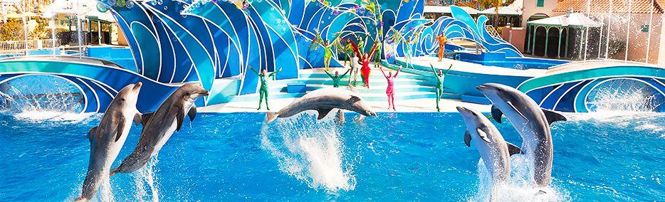 Ingressos SeaWorld Orlando - Viagens Bacanas