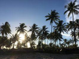 Península de Maraú - Viagens Bacanas