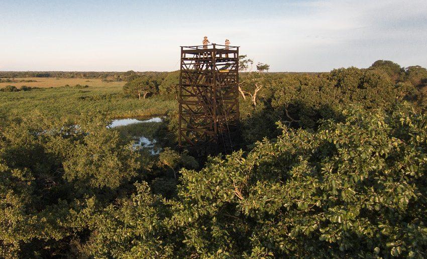Torre de observação do Araras Eco Lodge