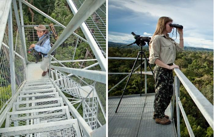 Torre de Observação do Cristalino Lodge - Foto crédito Samuel Melim